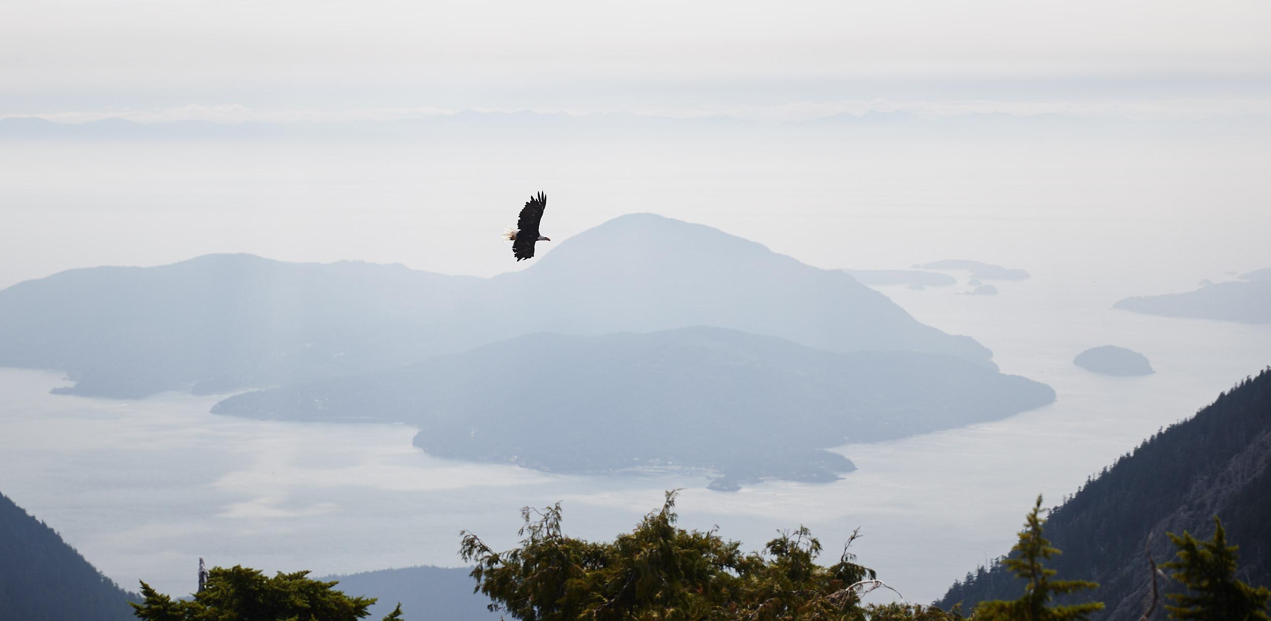 Howe Sound Crest Trail 26.jpg