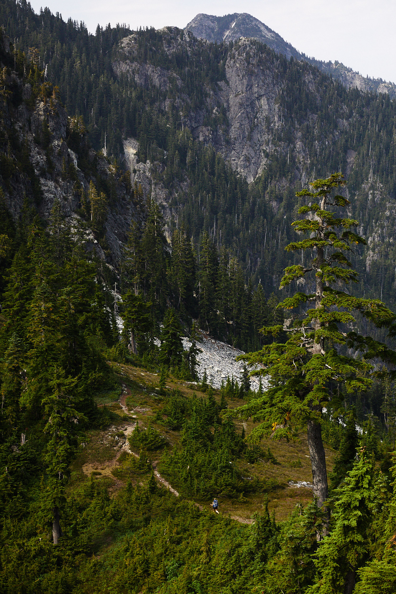 Howe Sound Crest Trail 25.jpg