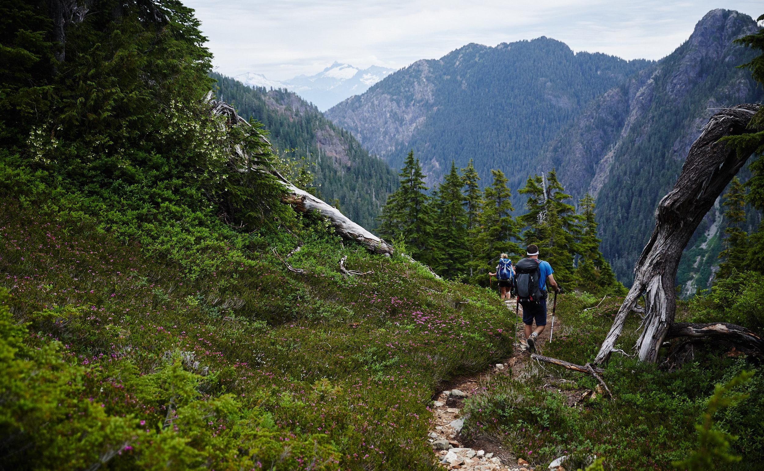 Howe Sound Crest Trail 32.jpg