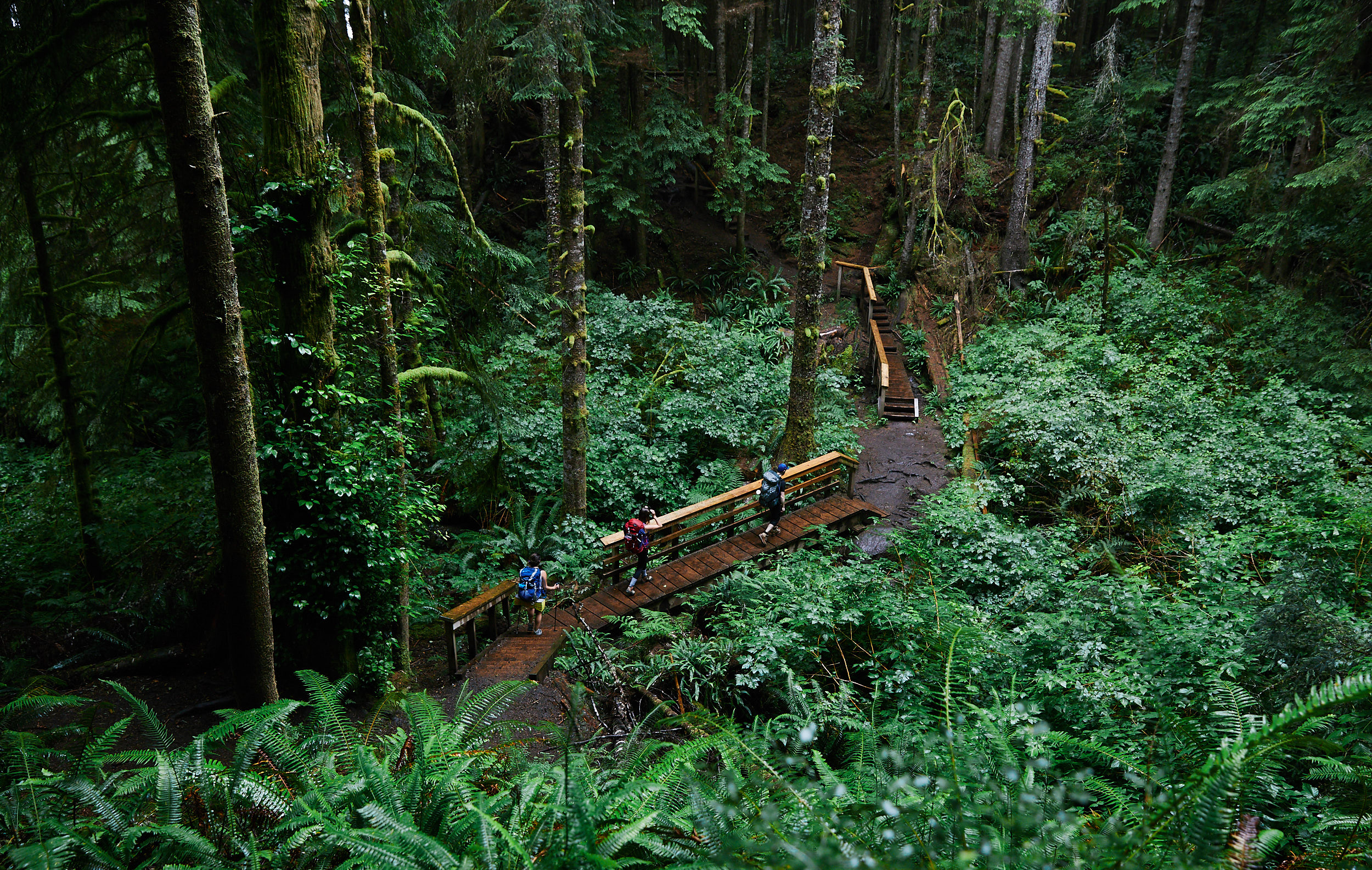 The trail has a number of bridges and walkways in varying condition.