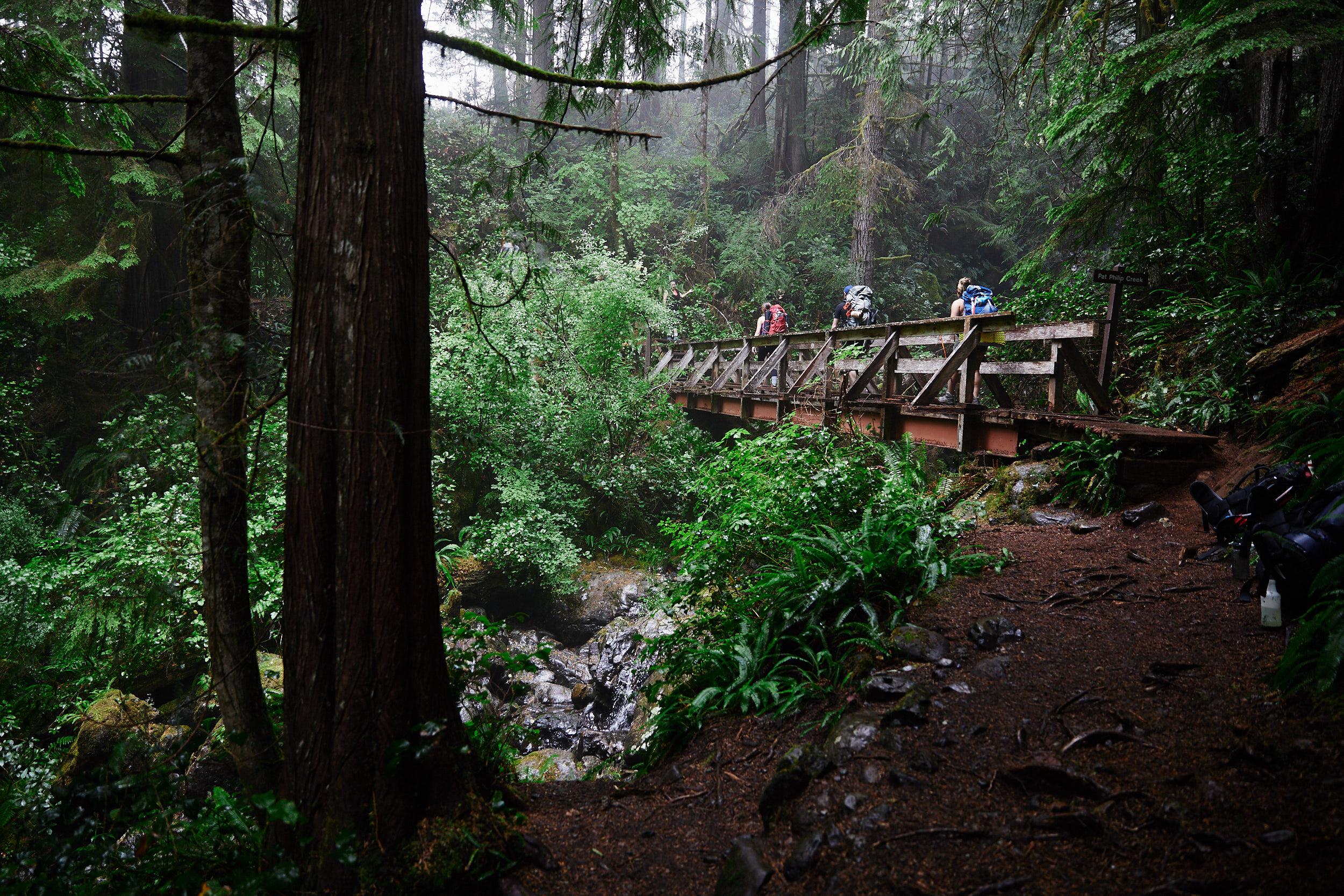 Juan de Fuca Trail 6.jpg