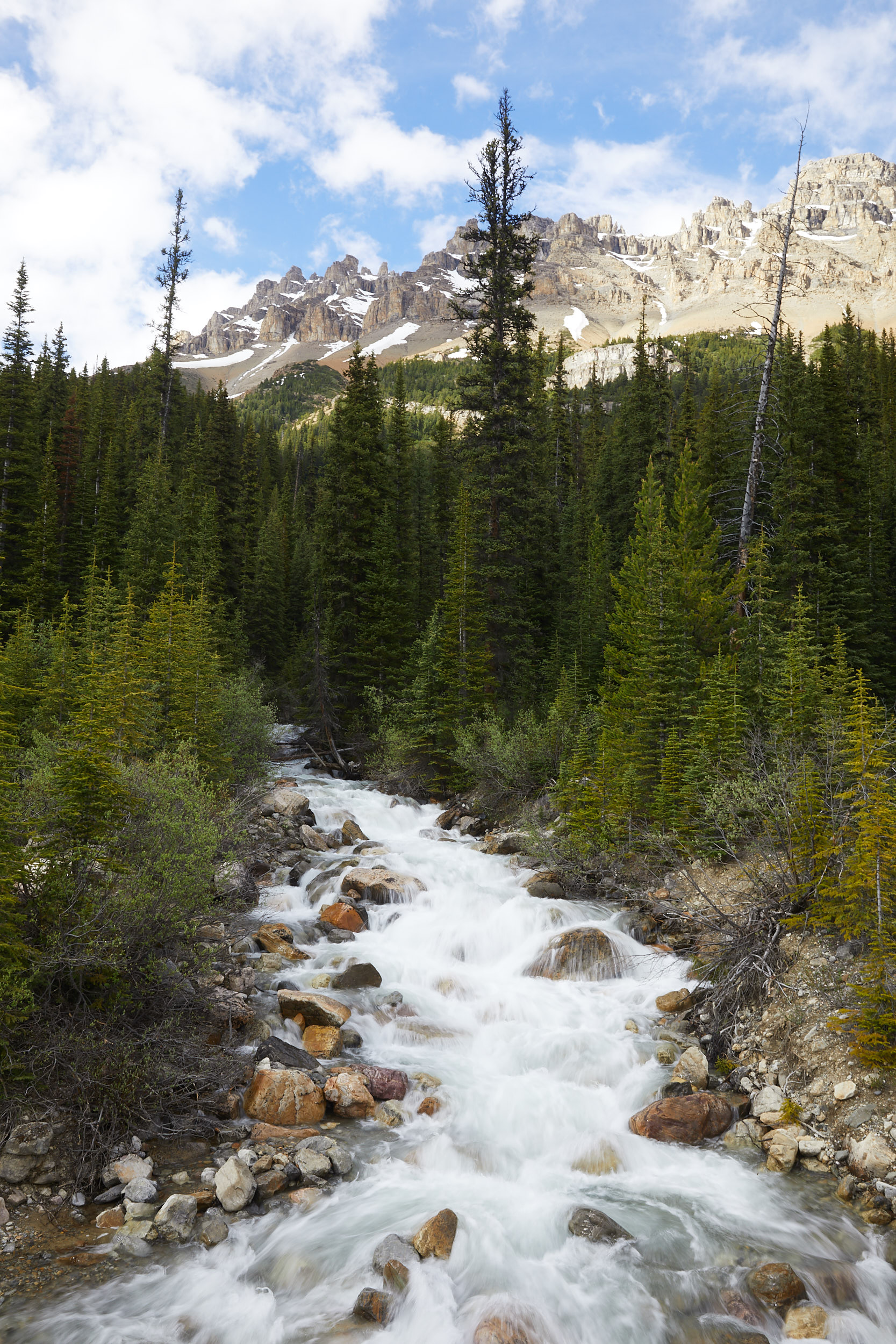 Icefields Parkway Cycle Tour - Lake Louise to Jasper 11.jpg
