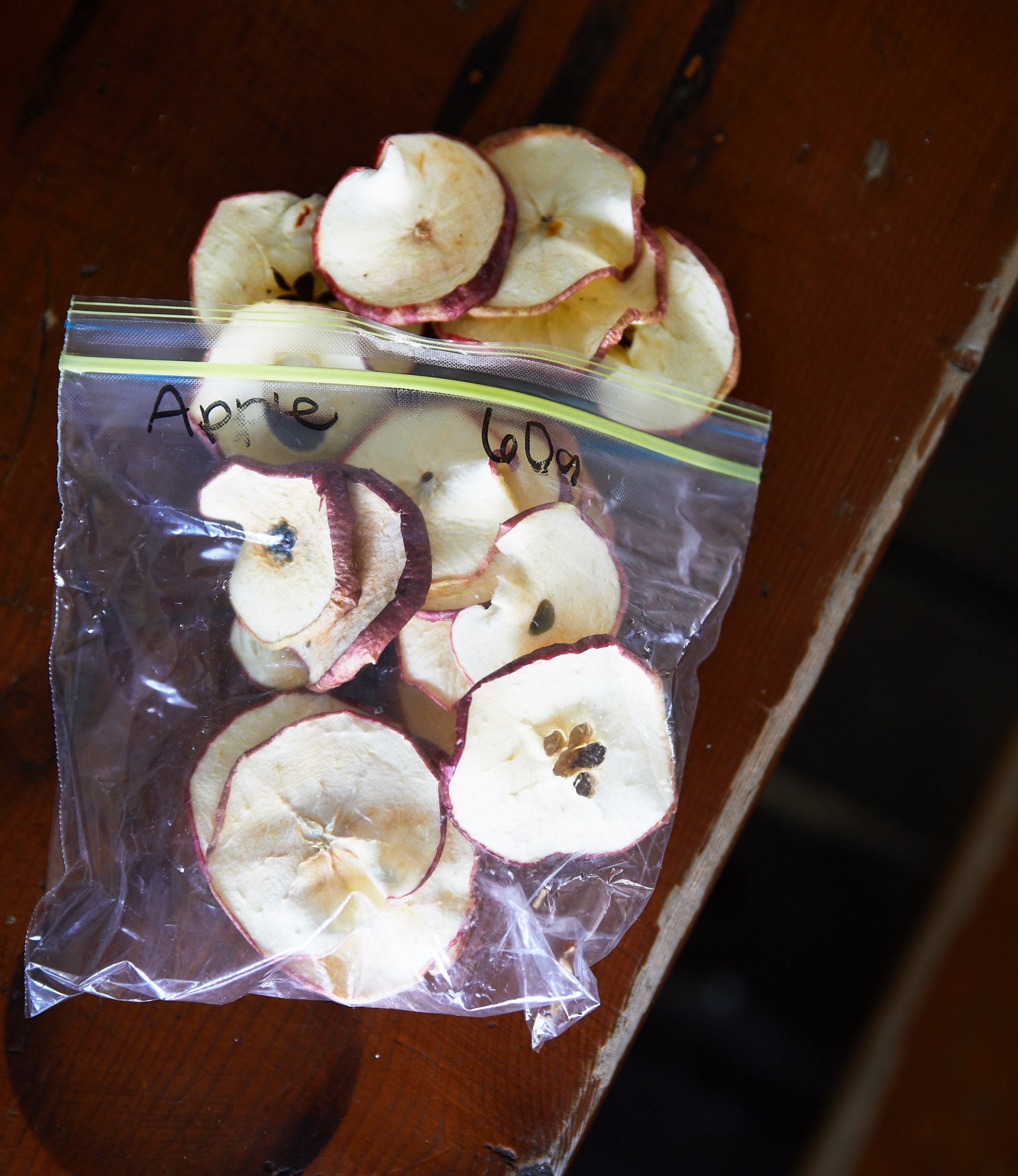 Paige dehydrated all of our meals for the entire trip, including these apples.
