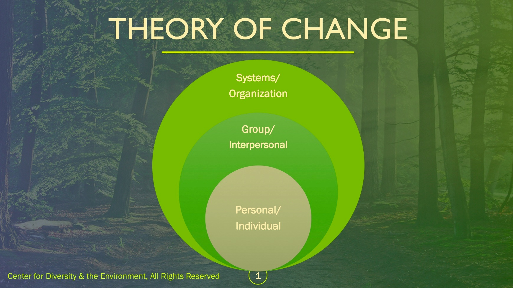 Center for Diversity & the Environment's Theory of Change with individual change at the center.