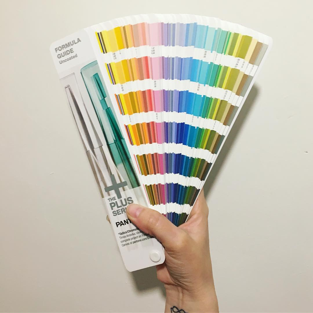 holding Pantone swatch book