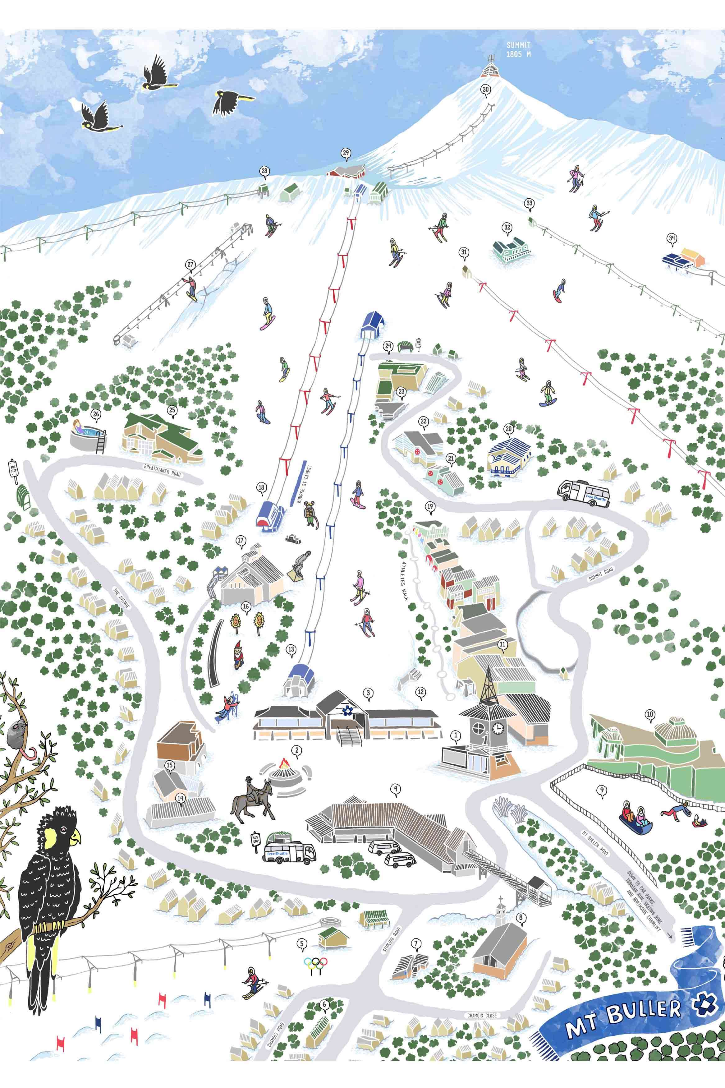 mt. buller illustrated map design