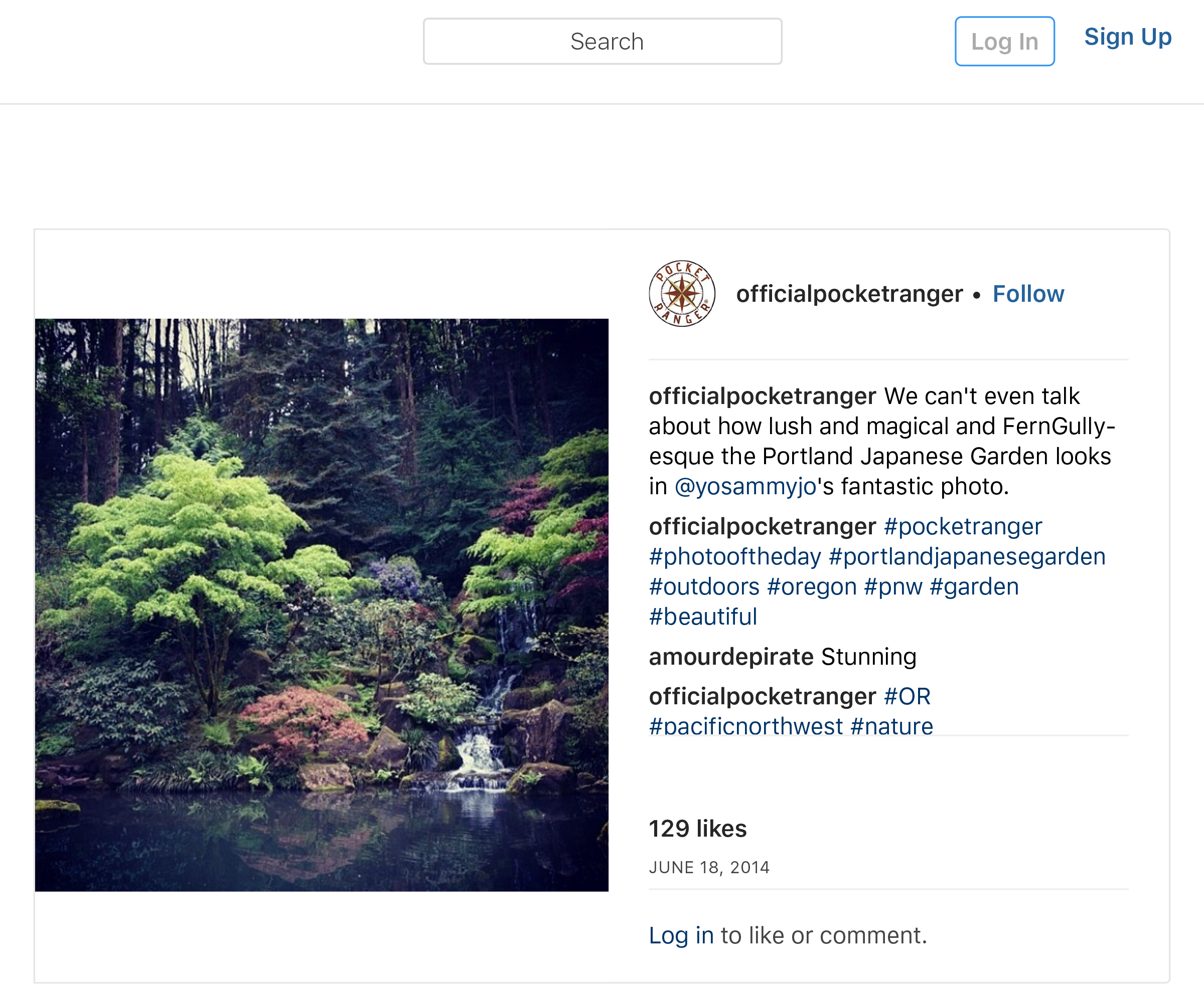 """OfficialPocketRanger on Instagram_ """"We can_t even talk about how lush and magical and FernGully-esque the Portland Japanese Garden looks in @yosammyjo_s fantastic photo."""" copy copy.jpg"""