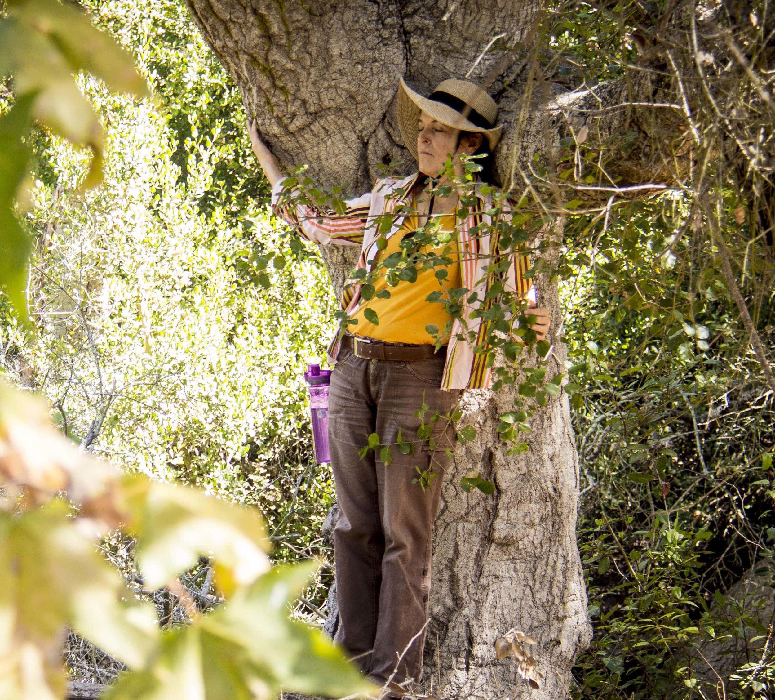 que son? - Los Baños de Bosque, o Shinrin Yoku, son experiencias guiadas de conexión con la naturaleza que te ayudan a desacelerar el ritmo, abrir todos tus sentidos, relajarte y reencontrarte de una forma que hace tiempo no sentías.