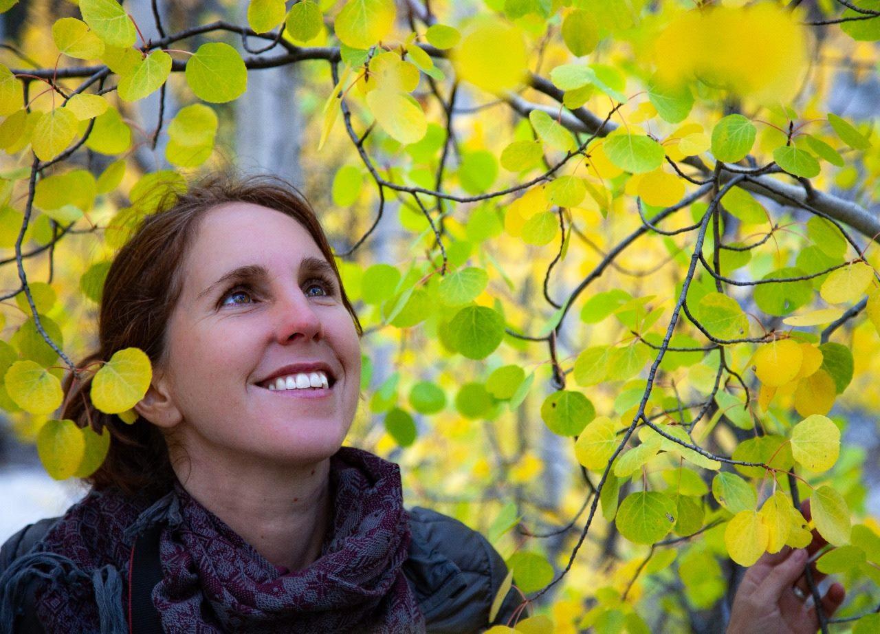 ACERCA DE MI - Mi nombre es Paula Pijoan y me encantan las infinitas maneras en que la Naturaleza nos ayuda a crecer, a sanar y a conocernos mejor a nosotros mismos.Después de muchos años de buscar una manera de apoyar a más personas en su propio camino de conectar profundamente con ella, descubrí la práctica de los Baños de Bosque e inmediatamente me enamoré.Desde el 2017 soy guía certificada por la Association of Nature and Forest Therapy, institución líder a nivel global en entrenamiento de terapia de bosque y naturaleza (www.natureandforesttherapy.org). Actualmente soy la única persona certificada en México y fui la primera en Latinoamérica. También soy maestra de meditación calificada y guía naturalista de la vegetación nativa de Baja California - dos herramientas que empatan perfecto con los baños de bosque.
