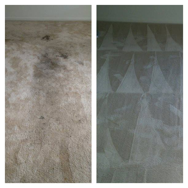 The Piedmont triad'S - Carpet & Cleaning Service