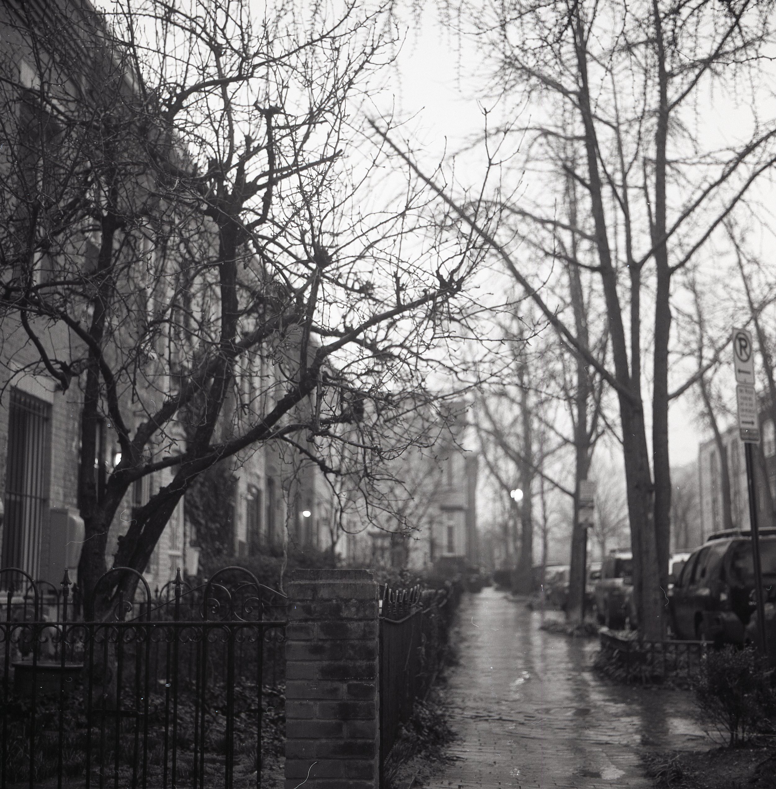 Rainy day in Shaw