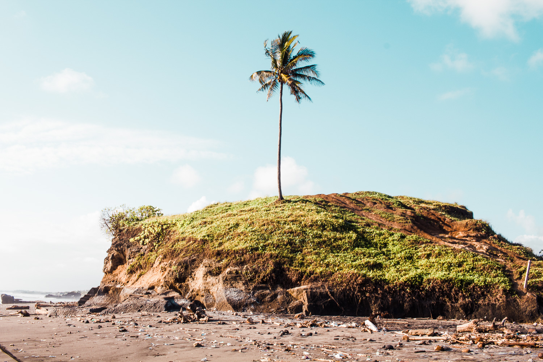 plastic_litter_beach.jpg