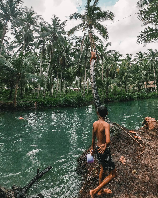 palm_tree_swing_kids.jpg