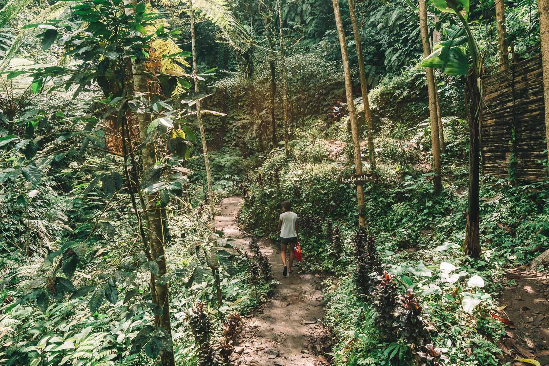 leke_leke_trail_2.jpg