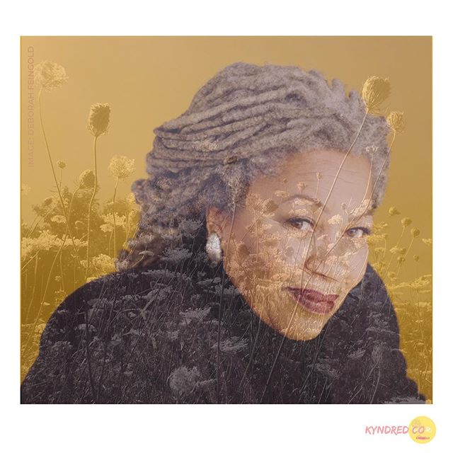 "TONI MORRISON on RACE . ""If I take your race away, and there you are, all strung out. And all you got is your little self, and what is that? What are you without racism? Are you any good? Are you still strong? Are you still smart? Do you still like yourself? I mean, these are the questions."" . Do yourself a solid, sit down and take in the whole interview. The Charlie Rose Show x Toni Morrison. . A Blsck Woman Writes . . . #tonimorrison #blackwoman #blackwomanwriters #literature #blackthought #charlierose #writingfiction #chloewofford #race #whitegaze #whitesupremacy"