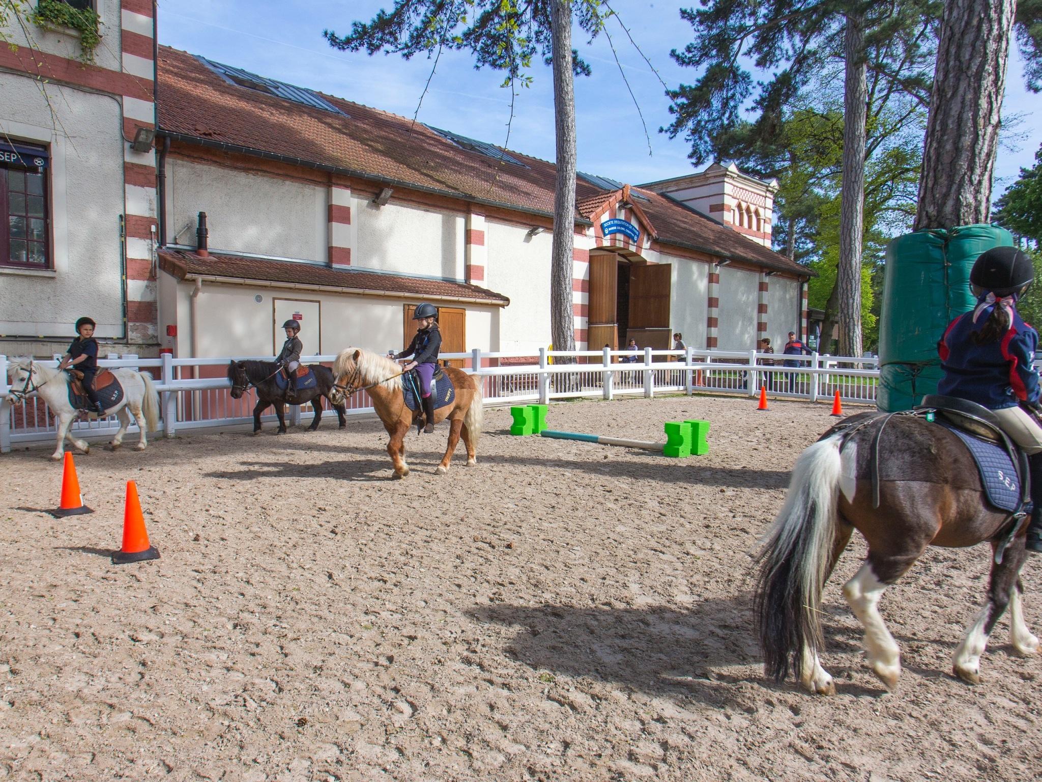 LES COURS SHETLAND - À partir de 4 ans, des cours Babyshetlands d'1/2 heure sont proposés aux jeunes cavaliers. Cette première année initie les cavaliers à la découverte du poney et de l'équitation et développe leur sens dans un esprit ludique.À partir de 5 ans, les cavaliers entrent en école Shetland.Les cours durent 1 heure et sont adaptés à l'âge et au niveau de chaque enfant.Les niveaux se décomposent en 3 sections: Poney de Bronze (1e année), Poney d'Argent (2e année) et Poney d'Or (3e année).