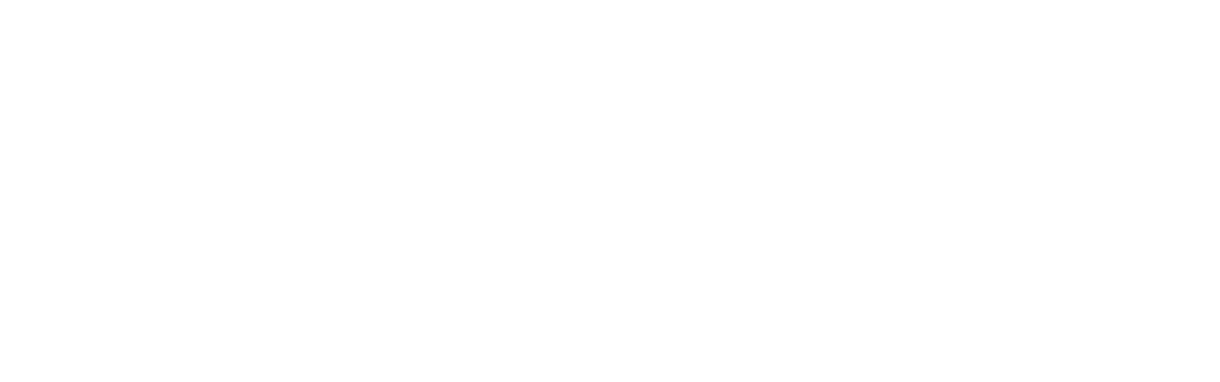 FSC Logo 2019 (White)(with date).png