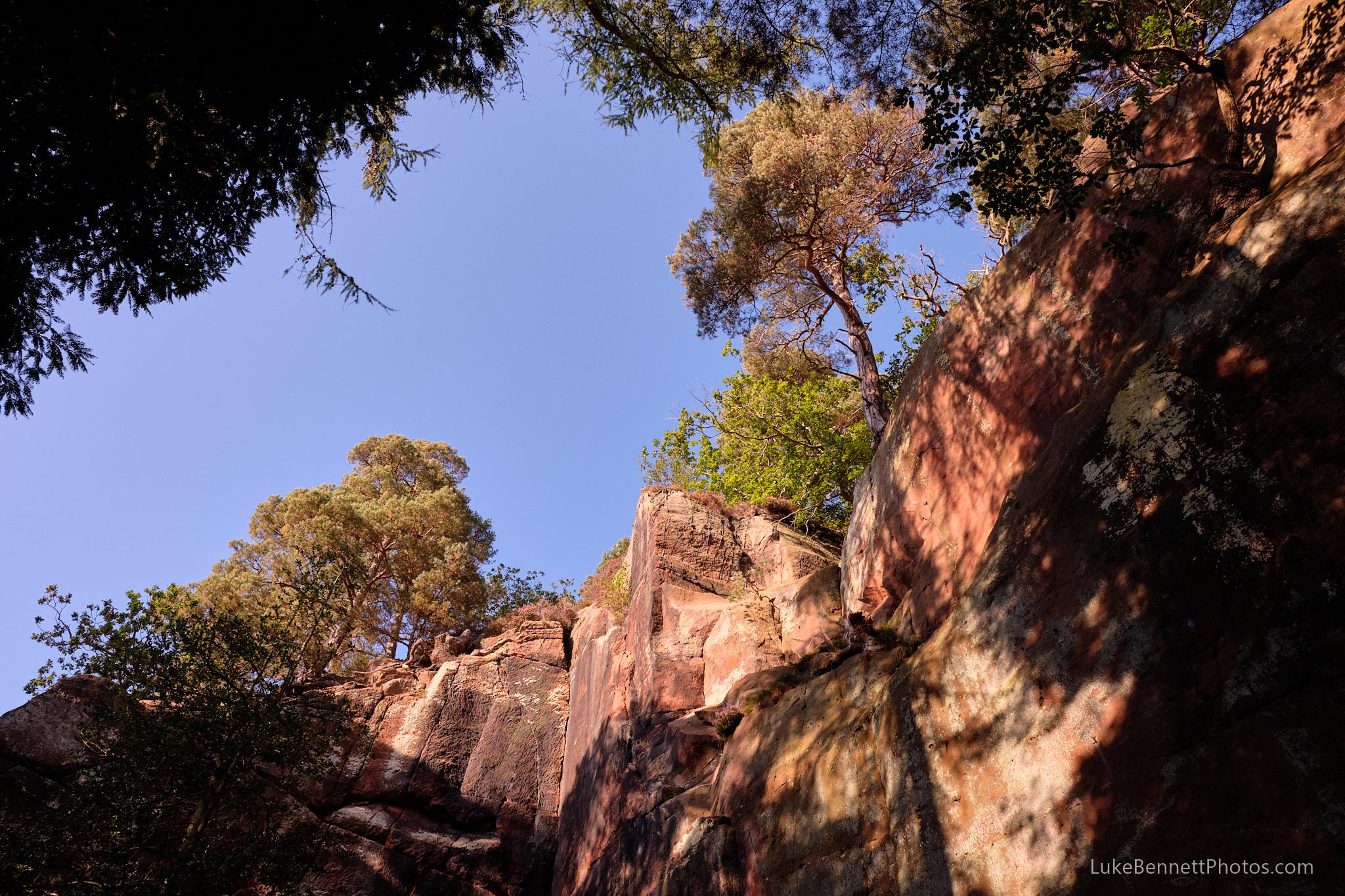 Nesscliffe Hills