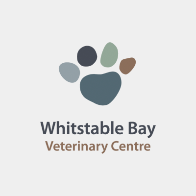 WHITSTABLE BAY VETS - Whitstable Bay Vets always go the extra mile for their clients and patients.