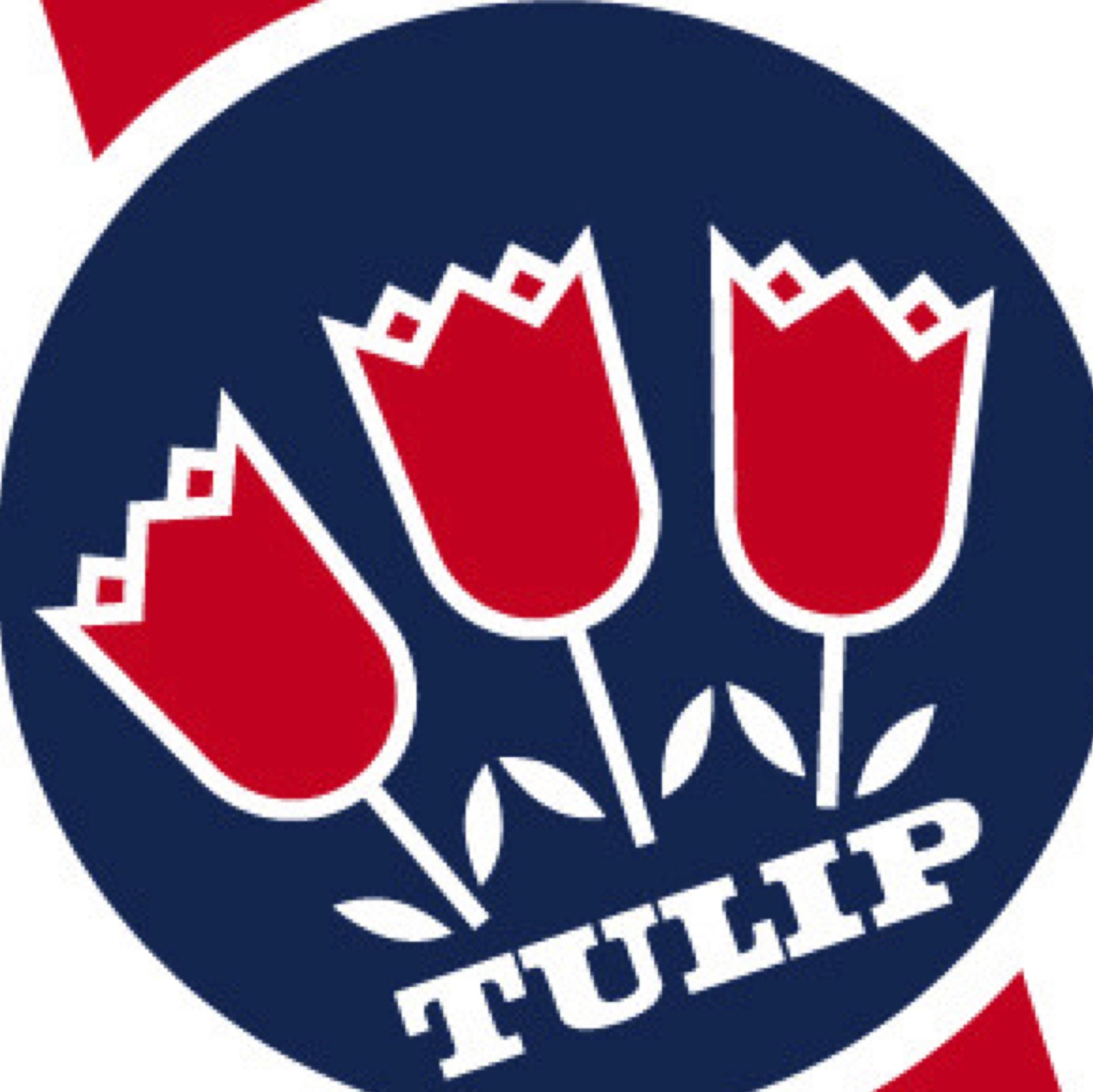 Tulip_Visionise.jpg