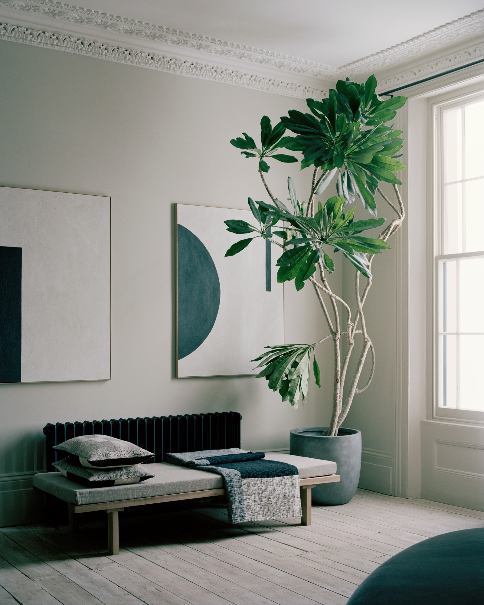 House_of_Grey-House-tree_daybed.jpg