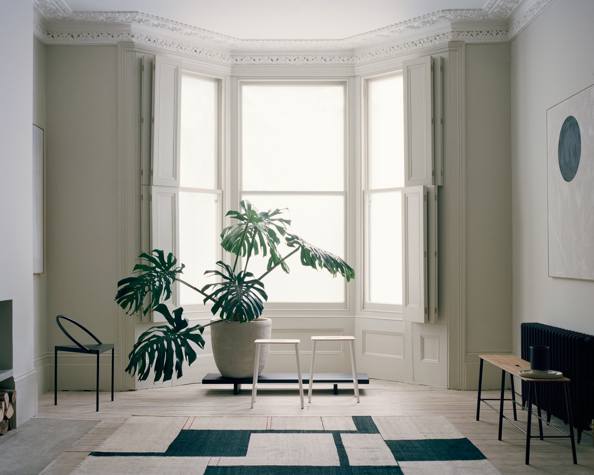 House_of_Grey_Exhibition_windows_foliage_bench.jpg