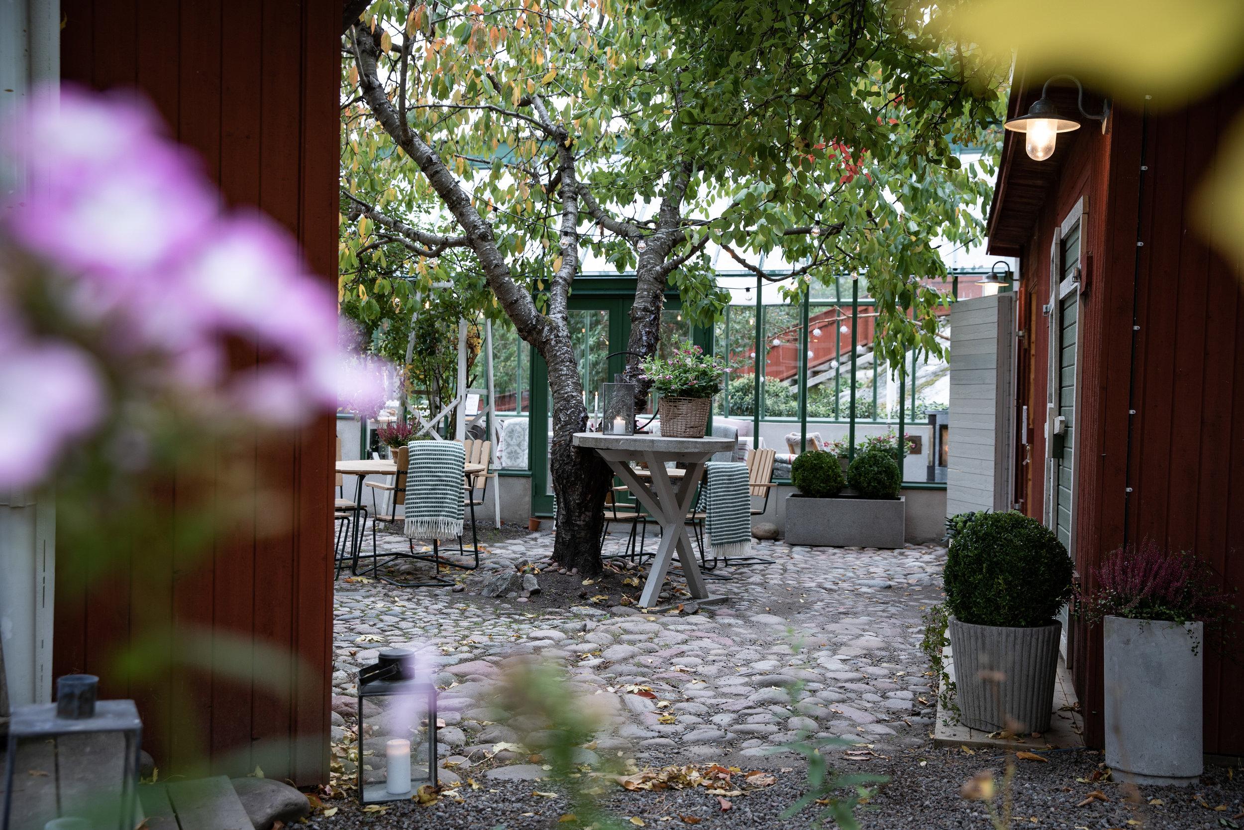 innergården_senhöst-2.jpg
