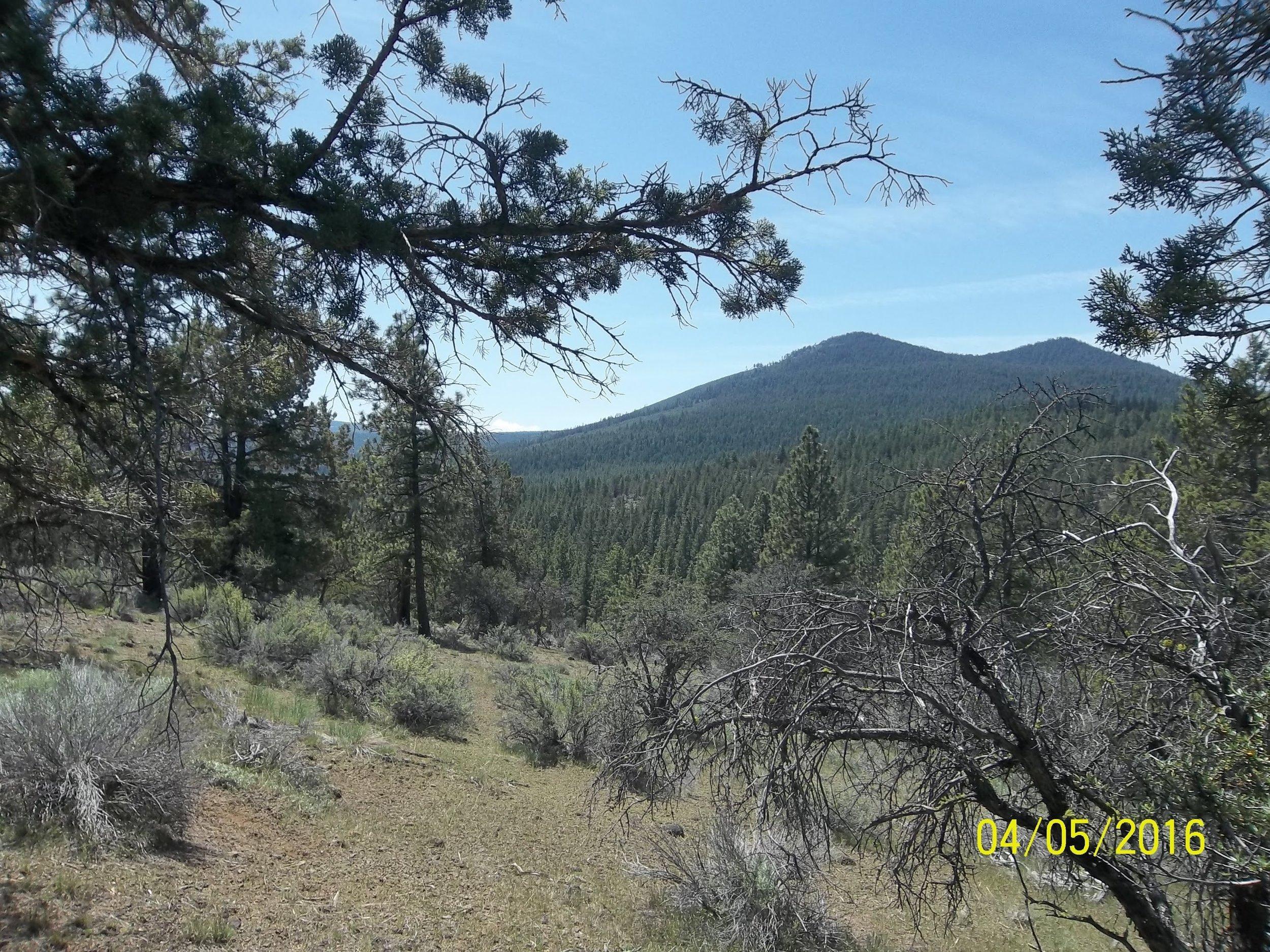 Sold 1.71 Acre Sprague River Oregon