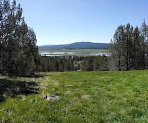 1.68 Acre Lot in Nimrod River Park Oregon