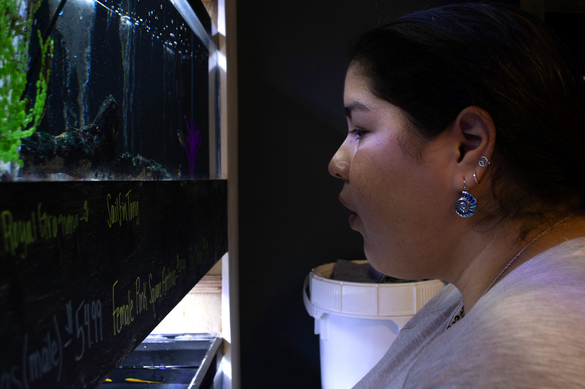 In their free time, Boyce and Manzonelli are still keeping up with their lab and doing what they can to improve it. The two drove to a tropical fish store about an hour away from Carolina's campus to buy some critters that could help clean the tanks as well as some sand, filters, and lights to help the creatures live better.