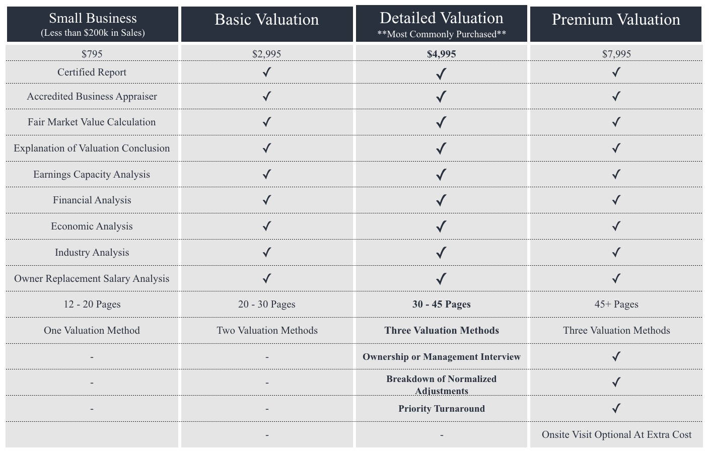 Business Valuation and Appraisal Cost.png