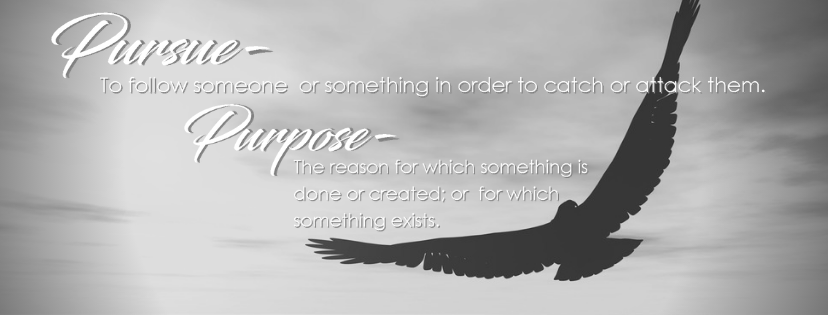 Copy of Purposed Pursuit FB Banner.png
