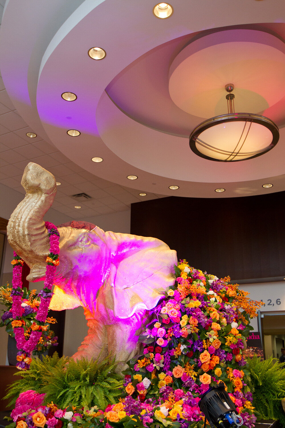 Paras-Events-Traditional-Colourful-Sangeet-Floral-Elephants-2.jpg
