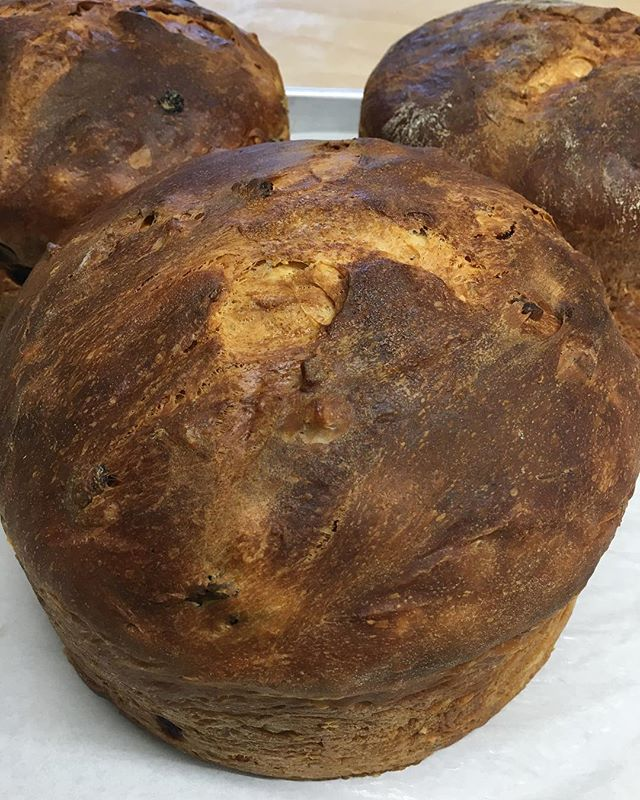 Look at our gorgeous panettone and limpa bread! Panettone is an Italian sweetbread traditionally baked for the holidays and many of you have already enjoyed our tasty limpa 😊 Stop in and grab a loaf today for your holiday celebrations!