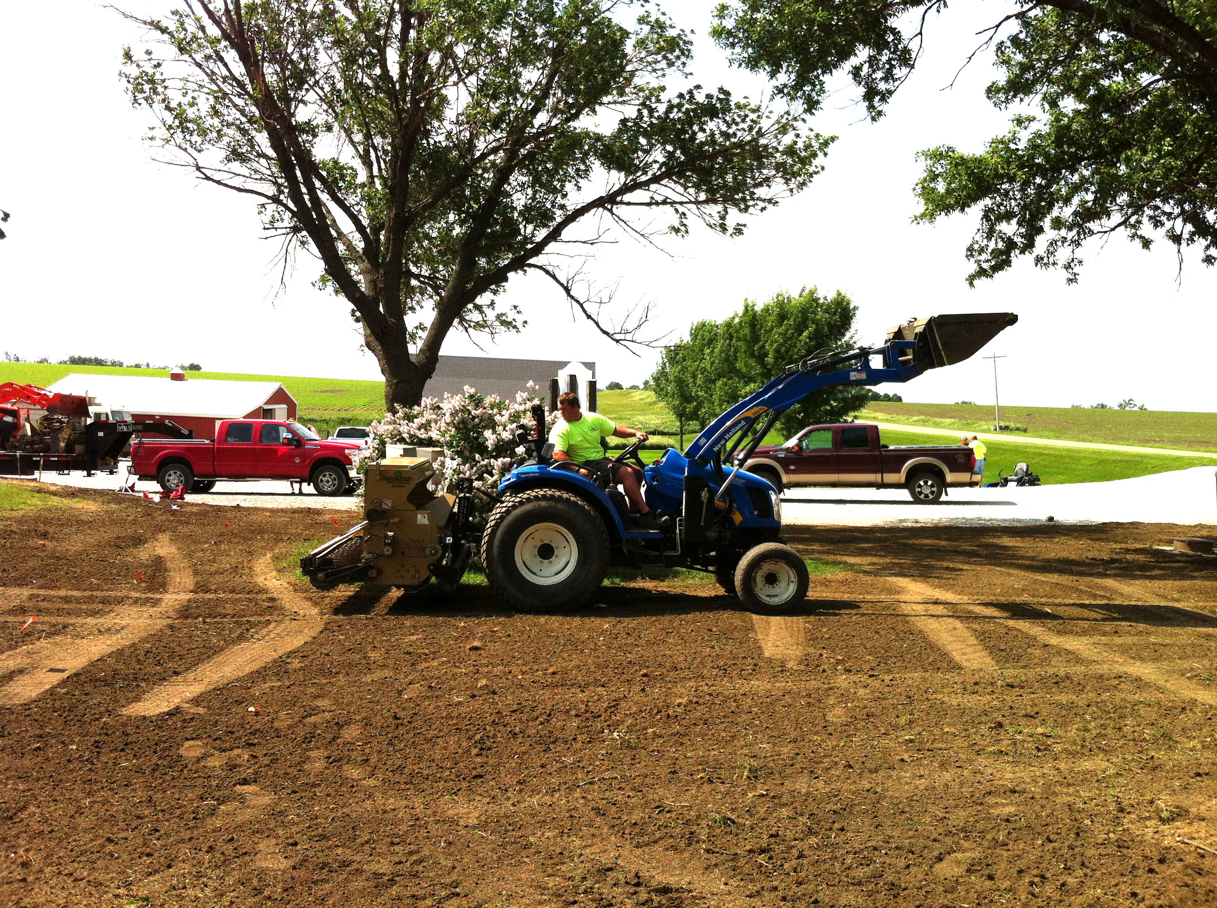Planting grass.JPG