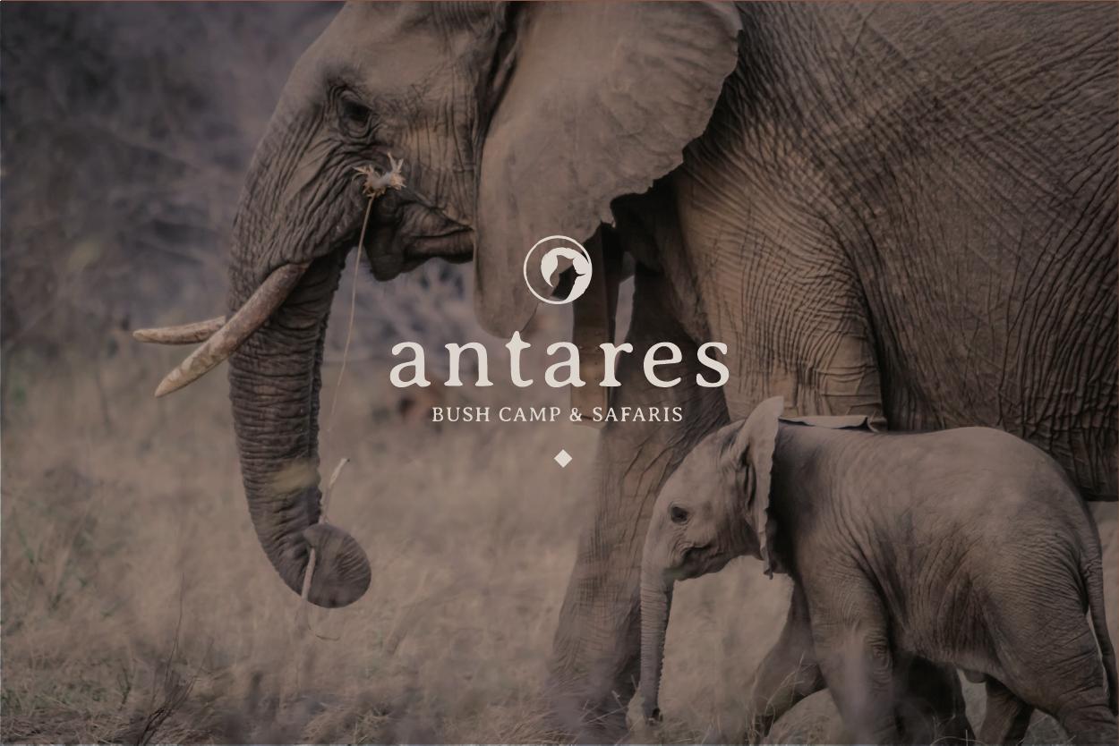 Antares_showcase-01.png