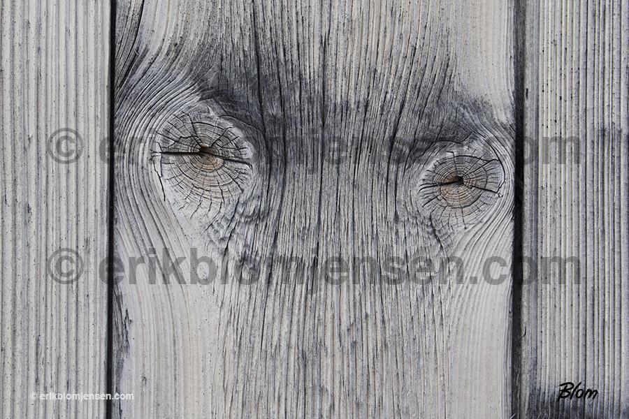 Nr. 22: Træøjne fra 100 år gammel fangshytte. Valgfrit materiale.  90x60 cm. Pris oplyses på forespørgsel.
