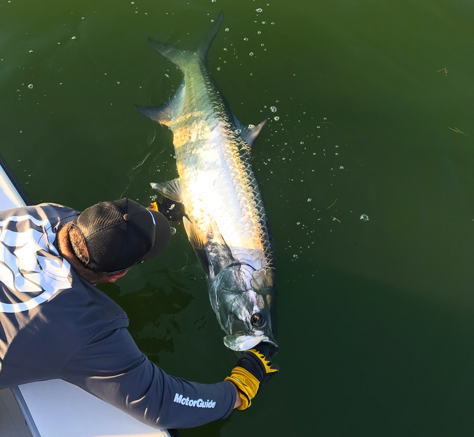 catch-tarpon-vero-beach-indian-river-treasure-coast.jpg