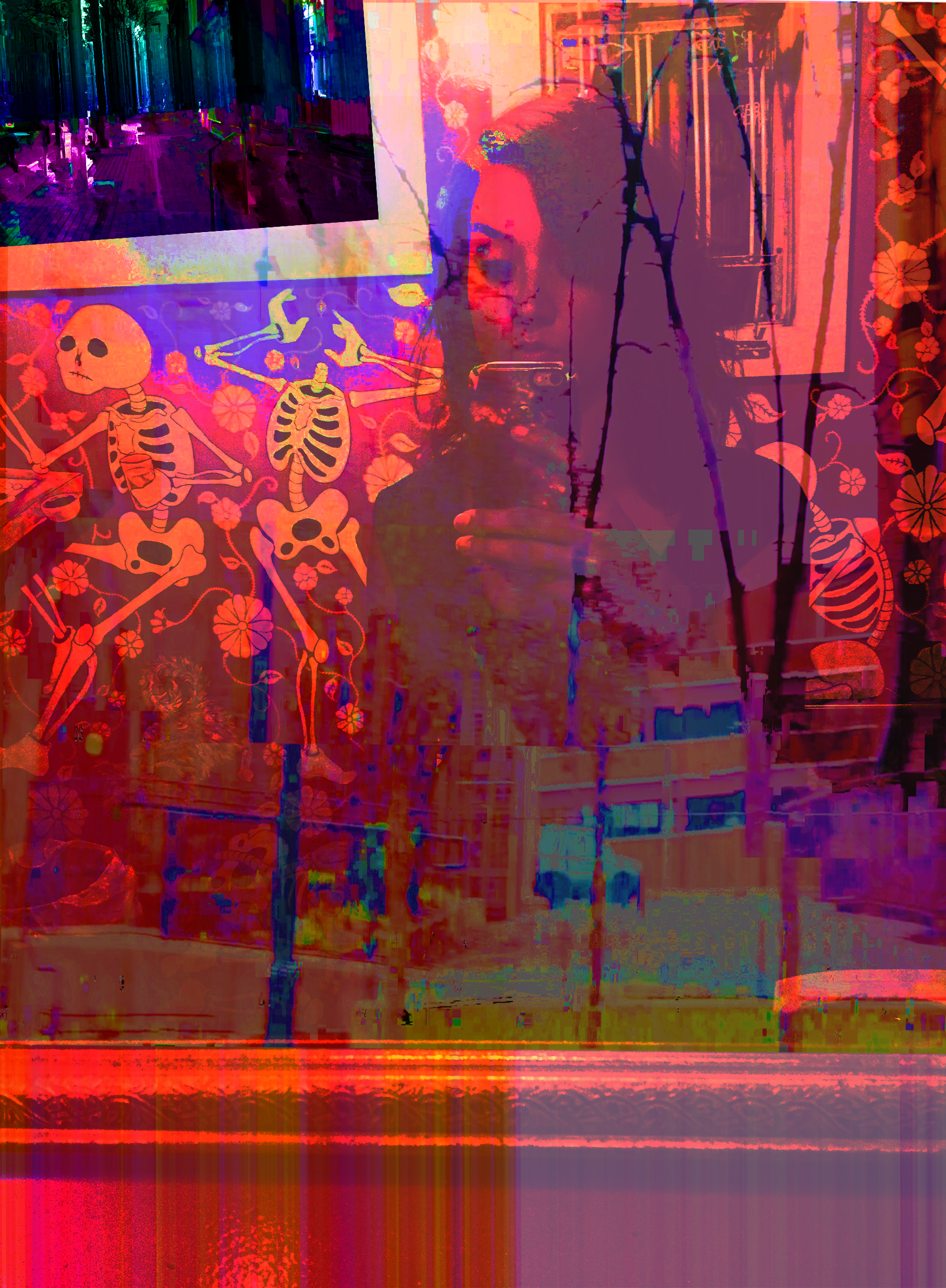 selife_glitch3.png
