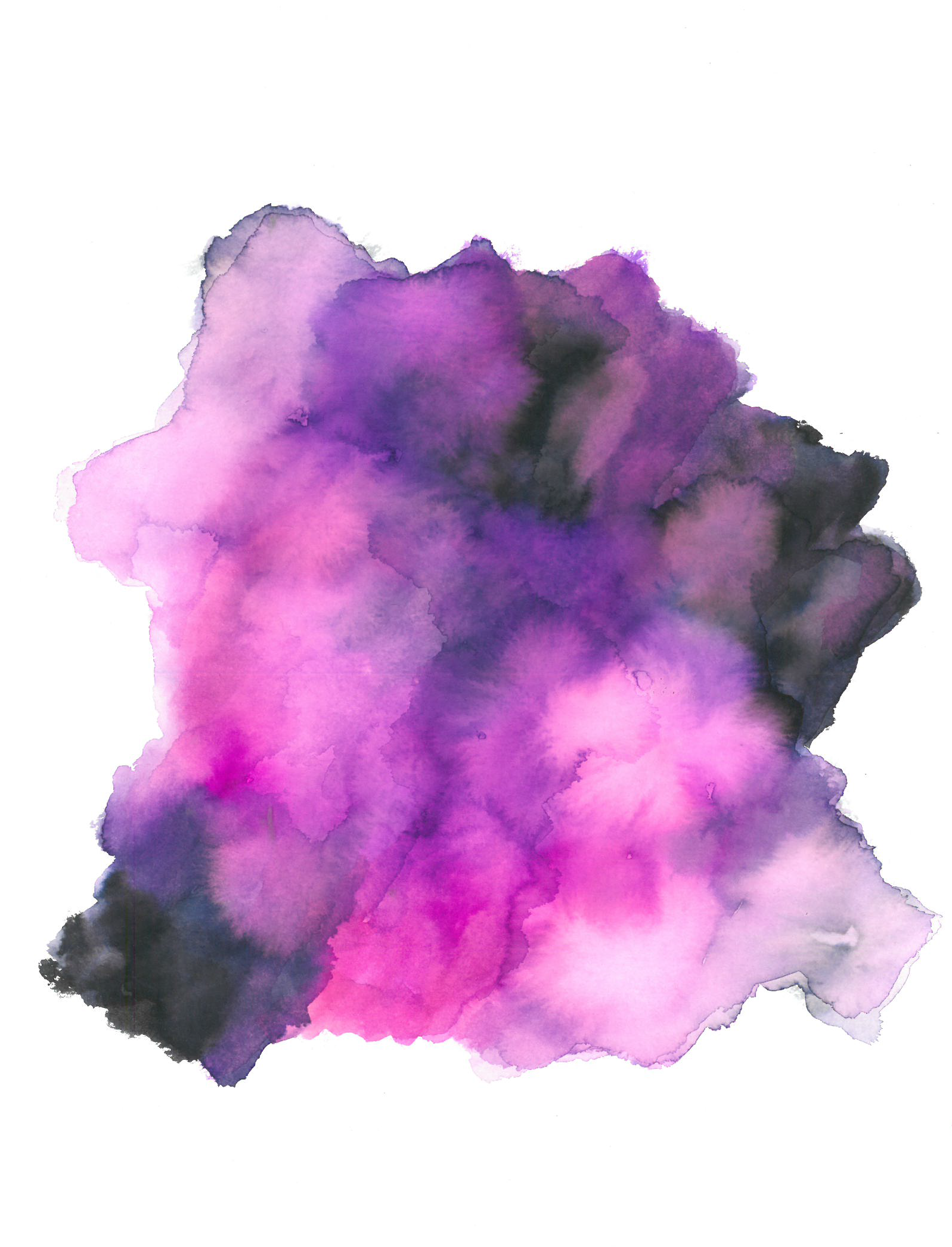 purple2 cropped.png