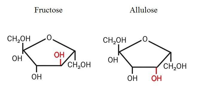 allulose2.jpg