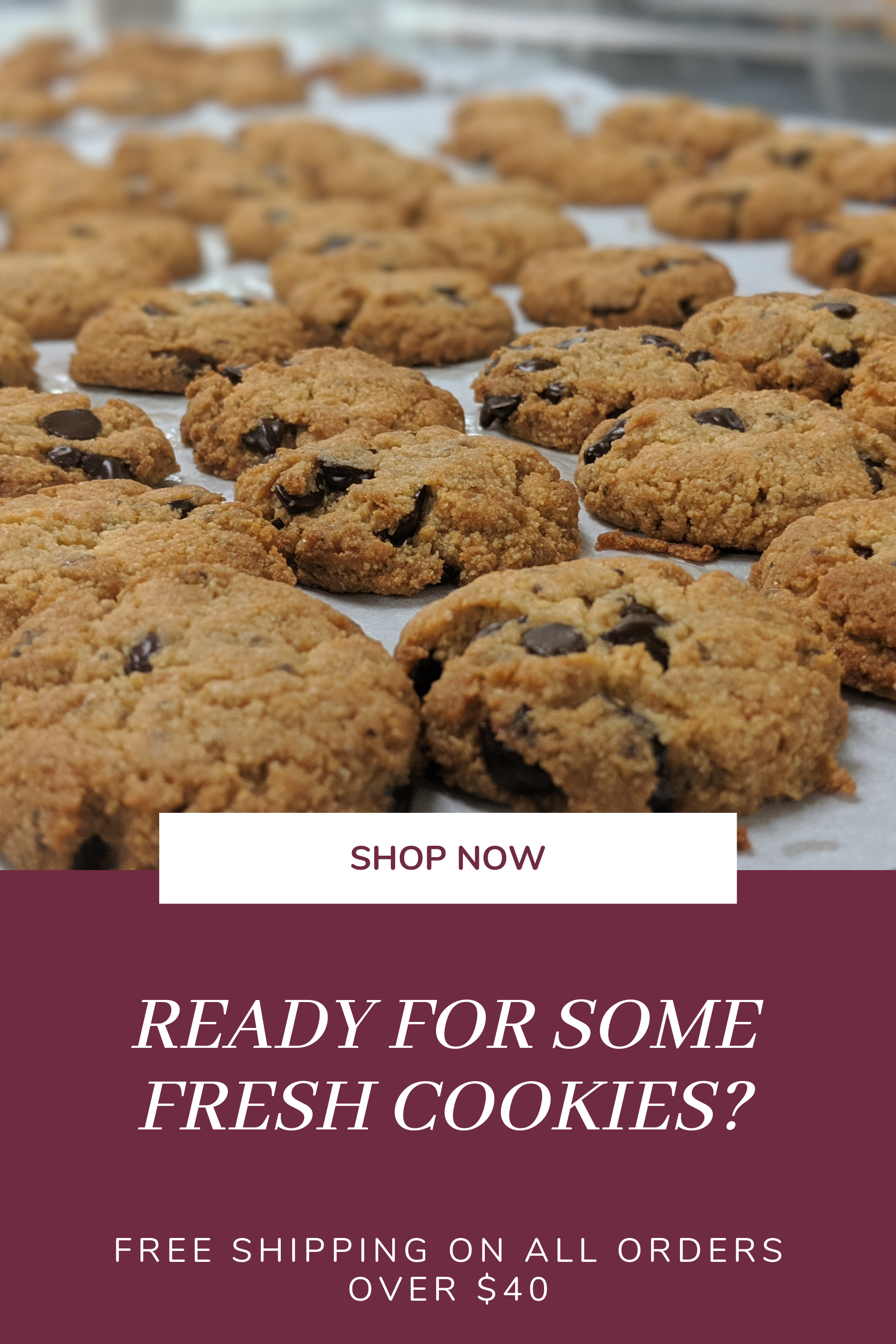 ChipMonk Keto Low Carb Chocolate Chip cookies