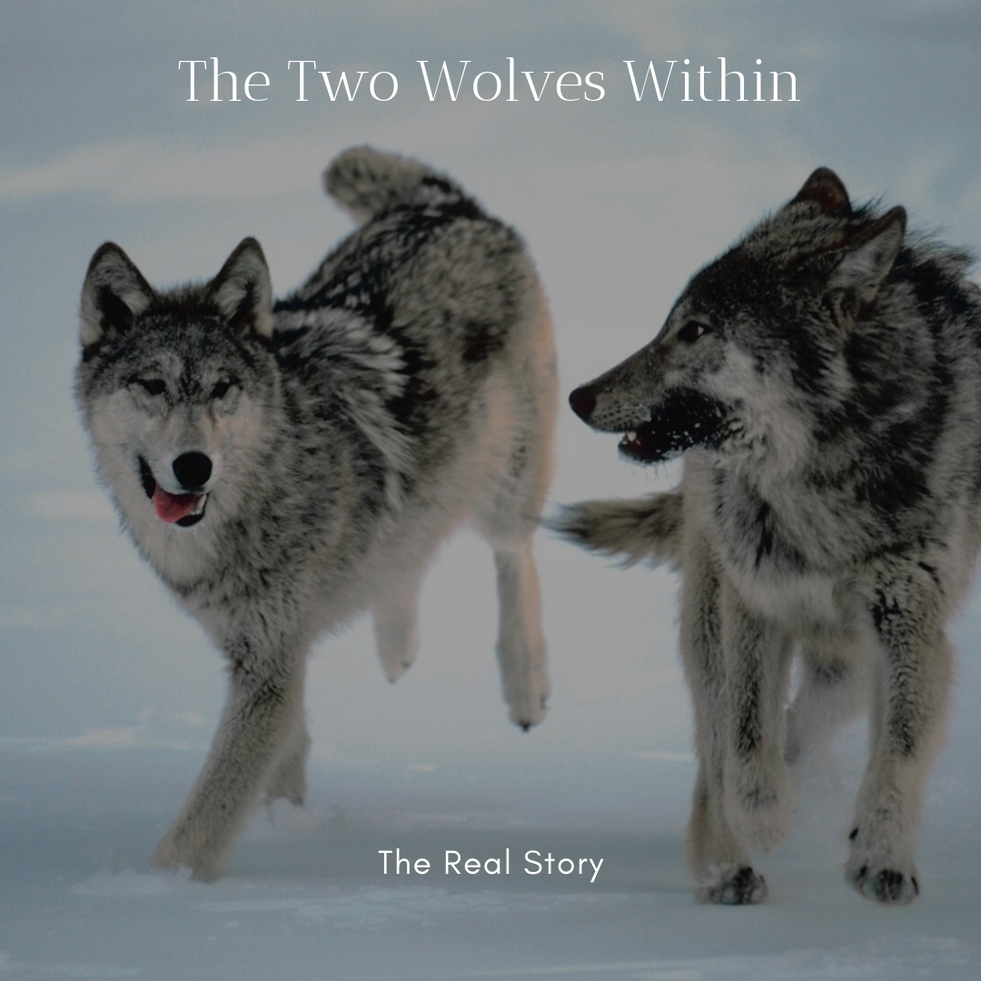 The Real Story of the Two Wolves.png