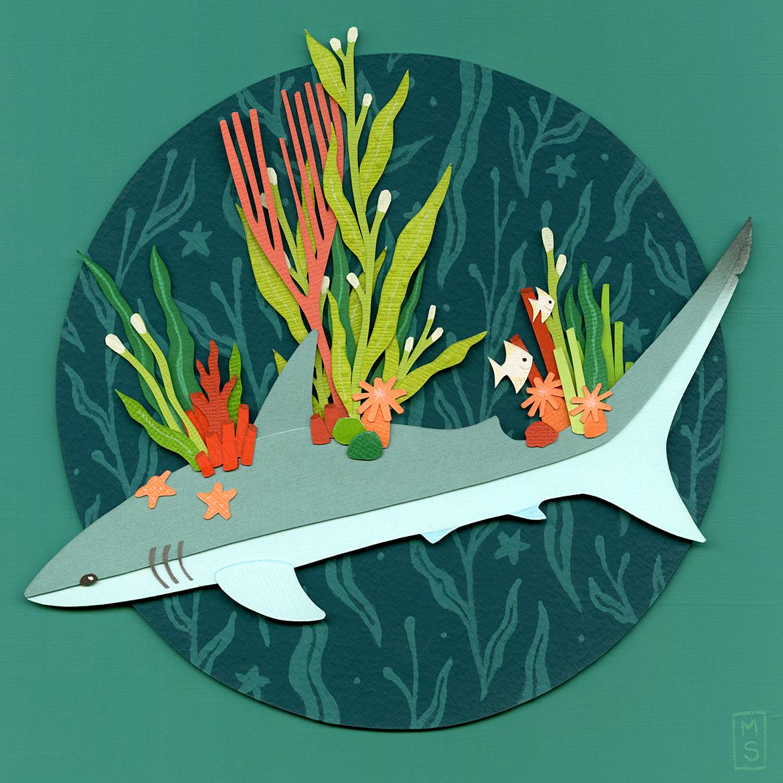 """Reef Shark"""