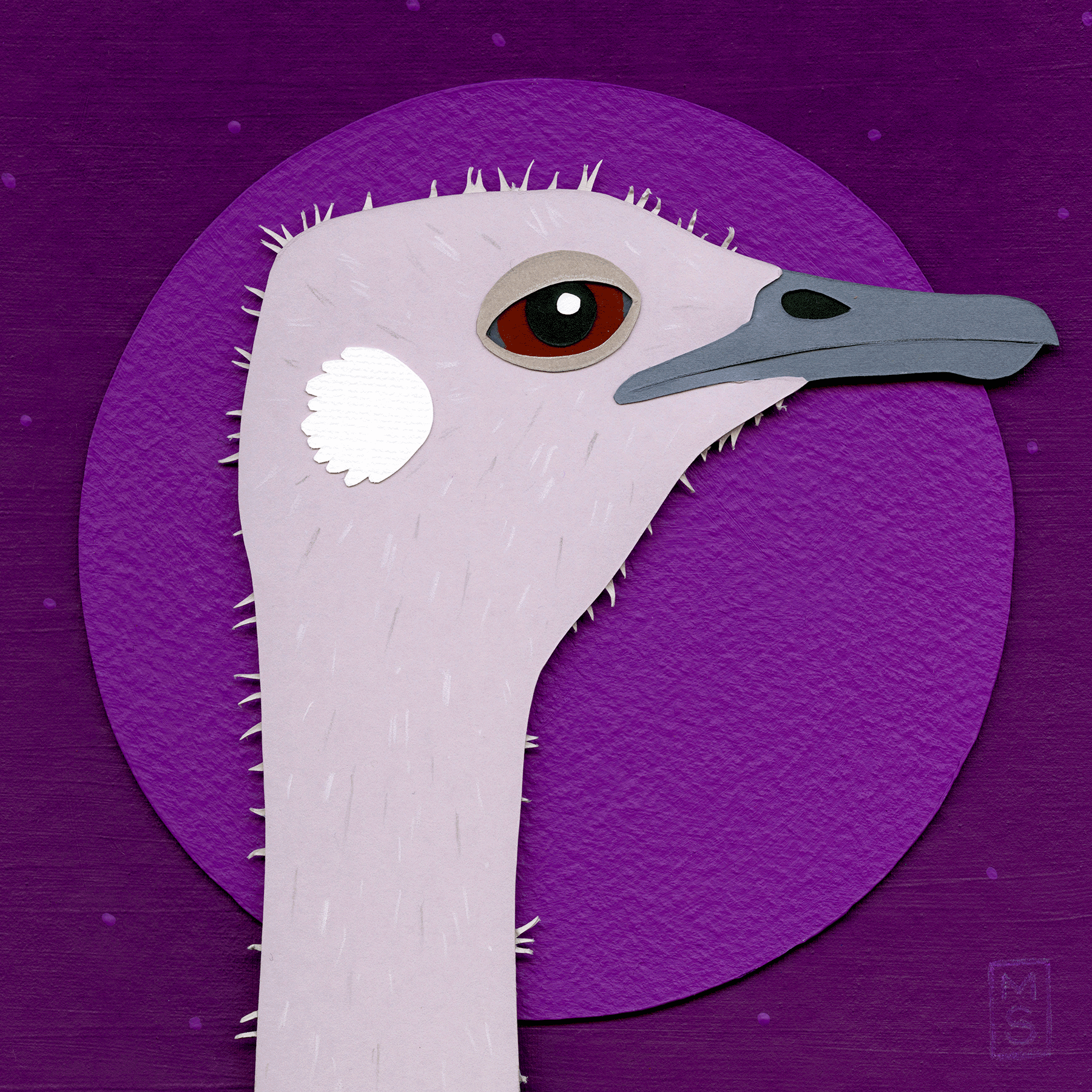 """Pantless Thunder-Goose (Ostrich)"""