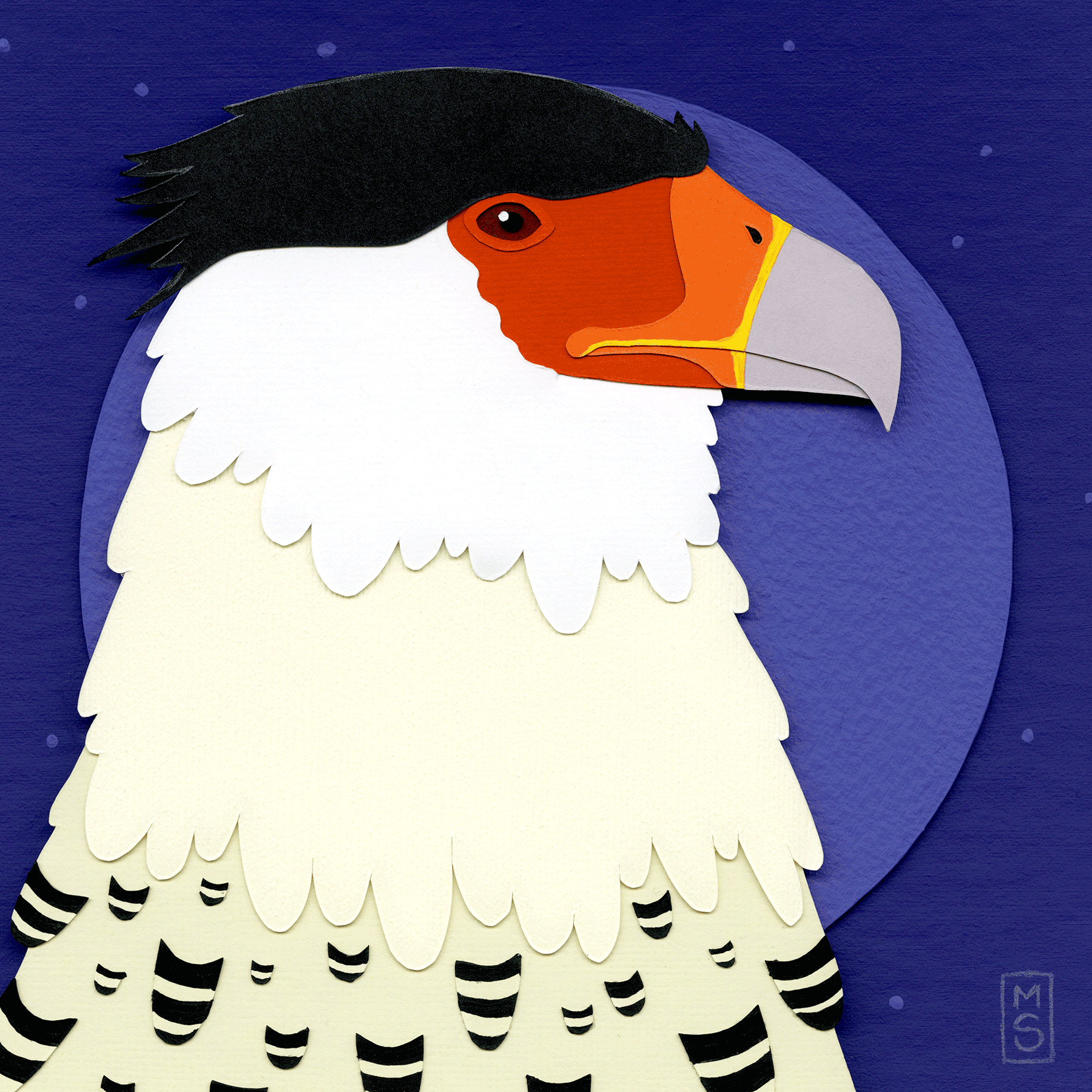 """Maj. Gen. Nigel Carrion (Crested Caracara)"""