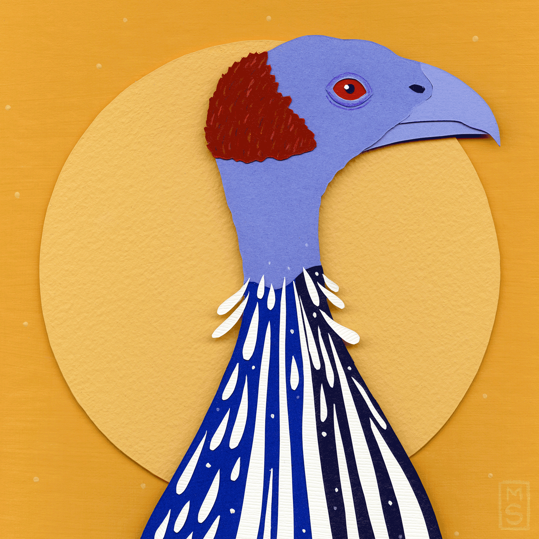 """Balding Umbrella (Vulturine Guinea Fowl)"""