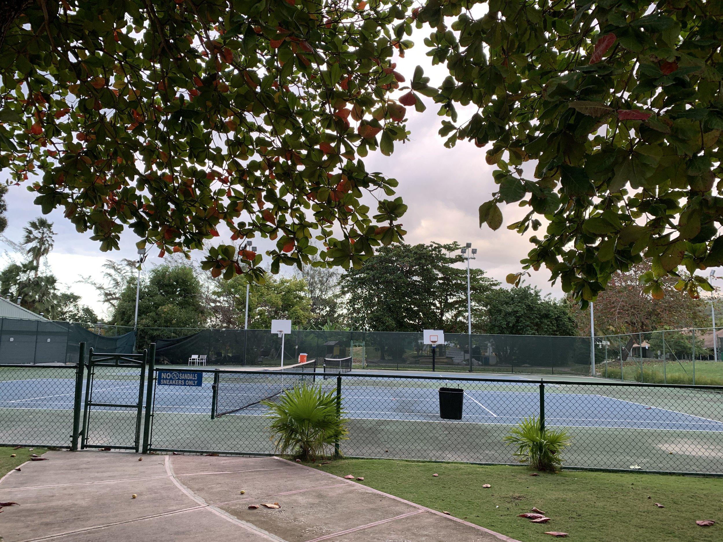 Their basketball/tennis court