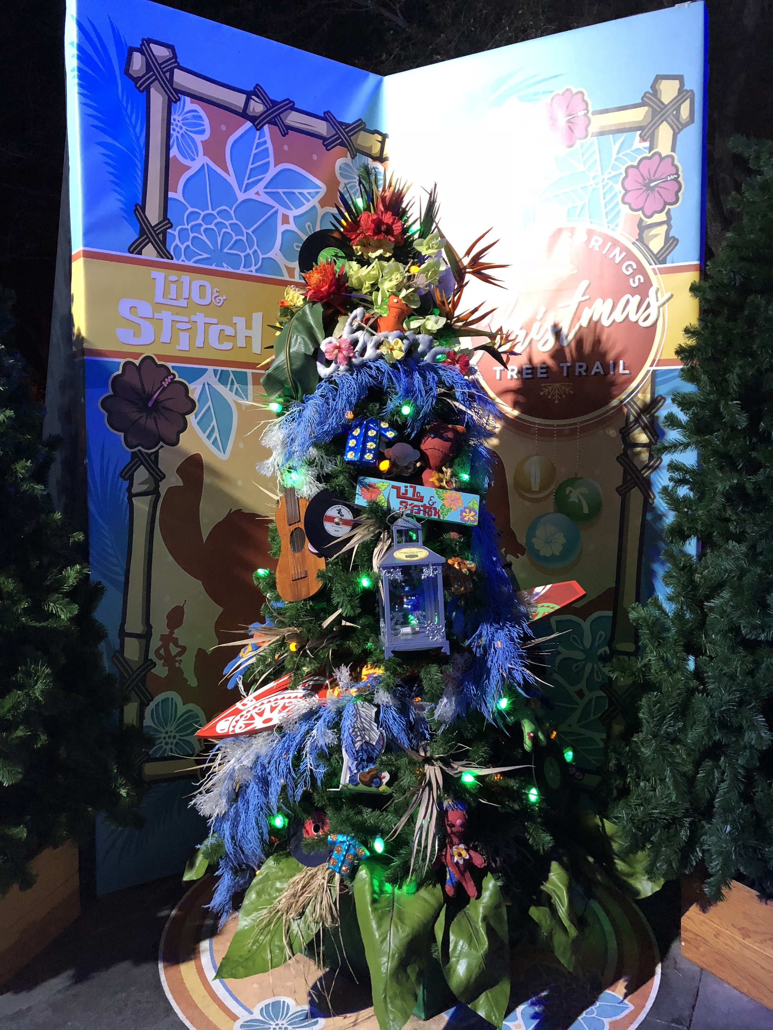 A little further back view of the Lilo and Stitch Tree.