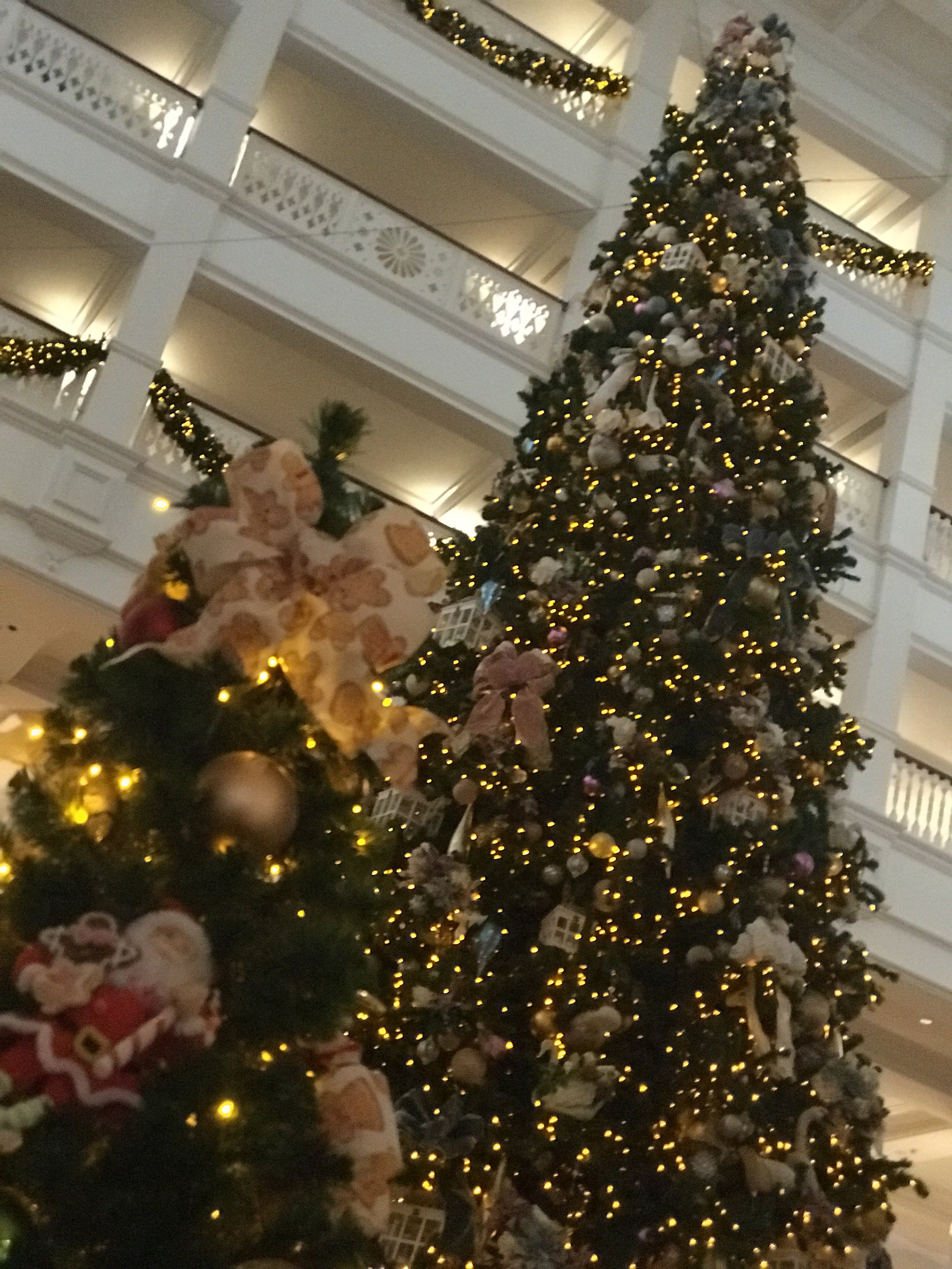 Grand Floridian's Lobby Christmas Tree. The most GRAND tree we've seen inside a hotel!